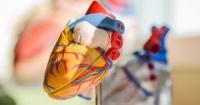 أعراض عدم انتظام ضربات القلب أبرزها ضيق التنفس