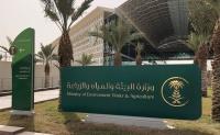وزارة البيئة تدعو المتقدمين والمتقدمات لوظائفها للمقابلة الشخصية ومطابقة البيانات
