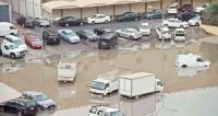 30 نوفمبر 2020 المحاسبة آتية ولا محاباة للمتسببين في الغرق