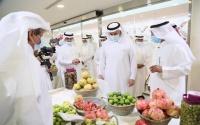 وزير الزراعة السعودي يدش ن المرحلة الثانية من مبادرة تأهيل المدرجات الزراعية