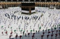 الصحة السعودية لم يتم تسجيل إصابة واحدة بـ كورونا بين الحجاج