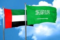 تحالف سعودي إماراتي سيادي يخطط لشراء شركة أمون للأدوية المصرية