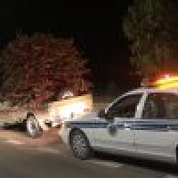 أمن الطرق يضبط 20 شخصا و20 شاحنة محملة بالحطب المحلي